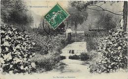 ~  JP  ~  88  ~     MOYENMOUTIER   ~   La Ravine à COICHOT  ~ - France