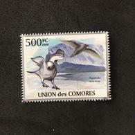 UNION DES COMORES. POLAR PHILATELY. MNH. D2805B - Seagulls