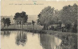 ~  JP  ~  88  ~   LA PETITE  RAON      ~   étang  LACDERICH - Autres Communes