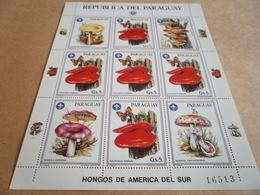 Sheetlet Paraguay 1986 Mushrooms Of South America Hongos - Paraguay