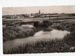 Billiers (56 Morbihan) Pont De Riosel (PPP18459) - France