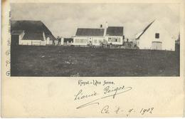 HEYST : Une Ferme - D.V.D. 7461 - Courrier De 1902 - Heist