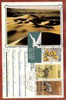 Ganzsache + ZF, Gazelle, Namibduene, Luftpost, Namutoni Nach Oberwolfach 1981 (74304) - Covers & Documents
