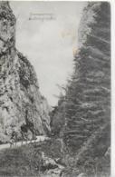 AK 0245  Semmering - Adlitzgraben / B.K.W.I. Karte Um 1905 - Semmering
