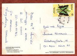 AK Leopard Beach Hotel Mombasa, Papilio Phorcas, Nach Koeln 1989? (74318) - Kenia (1963-...)