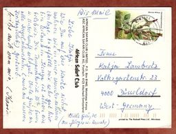 AK Watuma Beach Hotel Mombasa, Luftpost, Ceropegia Ballyana, Nach Duesseldorf 1987? (74319) - Kenia (1963-...)