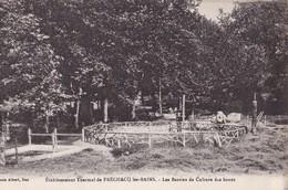 PRECHACQ LES BAINS - Etablissement Thermal - Les Bassins De Culture Des Boues - France