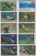 SLOVENIA MOBITEL BIRD SWALLOW PTARMIGAN TERN WOODPECKER CORNCRAKE BUZZURD SHRIKE EAGLE 10 PHONECARDS - Oiseaux