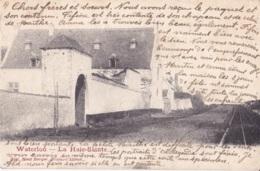 Waterloo La Haie-Sainte Circulée En 1902 - Waterloo