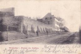 Waterloo Ferme Du Caillou Circulée En 1902 - Waterloo