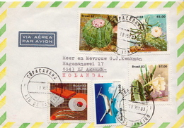 Postal History Cover: Brazil Set On Cover - Cactusses