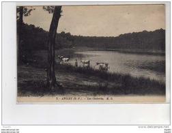 ANGLET - Lac Chiberta - Très Bon état - Anglet