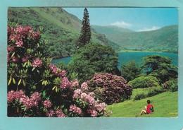Small Post Card Of Lake Gwynant,Snowdonia, Wales,V97. - Wales