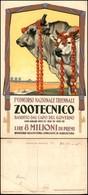 CARTOLINE - PUBBLICITARIE - I Concorso Nazionale Triennale Zootecnico - Ill. Martinati - Nuova - Pieghe In Angolo Basso  - Francobolli