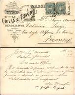CARTOLINE - TESTATINA - Scorze Carboni E Legnami Giovanni Biagioli Massa Marittima - Viaggiata FP - Francobolli