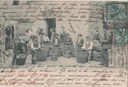 CPA  Italie. Catane, Sicile. Taglio Della Scorza Dei Limoni. 1903 - Catania