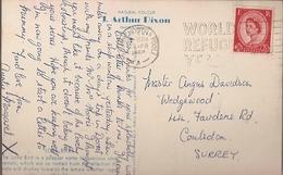 Great Britain & Marcofilia, Love Birds By J. Arthur Dixon, World Refugee Year, Bournemouth, Coulsdon 1960 (8678) - 1952-.... (Elizabeth II)