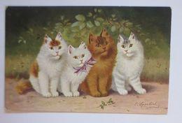 Katzen,   1906, S. Sperlich  ♥ (67521) - Félins