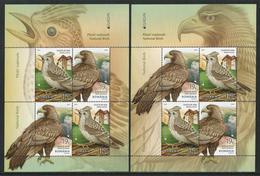 """RUMANIA /ROMANIA /RUMÄNIEN -EUROPA 2019 -NATIONAL BIRDS.-""""AVES -BIRDS -VÖGEL -OISEAUX""""-HOJITA BLOQUE Tipo 1 + Tipo 2 - 2019"""