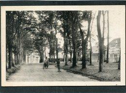 CPA - SAINT AUBIN SUR MER - Le Jardin Public, Animé - Saint Aubin