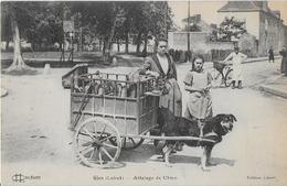 GIEN ( Loiret ) : Attelage De Chien  - Boulangère  (1925)*** - Gien