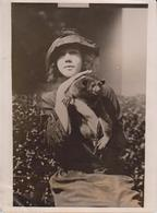MICKEY  A HONEY BEAR DELPHINE HEYL 1921  ZOO ANIMAUX ANIMALS ANIMALES   20 * 15 CM Fonds Victor FORBIN 1864-1947 - Fotos