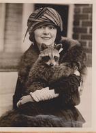 WALTER HECHT ATLANTA GEORGIA RACOON COON ZOO ANIMAUX ANIMALS ANIMALES   20 * 15 CM Fonds Victor FORBIN 1864-1947 - Fotos