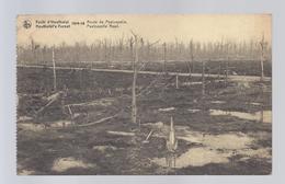 1920 FORÊT D' HOUTHULST 1914-18 ROUTE DE POELCAPELLE HOUTHULST'S FOREST POELCAPELLE ROAD - Houthulst