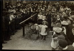 KIDS ON THE SHOW BISHOP OF BARKING  Attelage ZOO ANIMAUX ANIMALS ANIMALES   15 * 10 CM Fonds Victor FORBIN 1864-1947 - Fotos