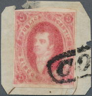 Argentinien: 1867 Rivadavia 5c. Rose-carmine, Blurred Impression From 7th Printing W/o Watermark, Im - Ohne Zuordnung