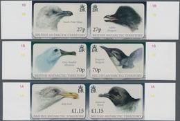 Britische Gebiete In Der Antarktis: 2010, Antarctic Birds (South Polar Skua, Adelie Penguin, Grey-he - Britisches Antarktis-Territorium  (BAT)