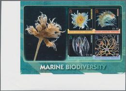 Britische Gebiete In Der Antarktis: 2010, International Year Of Biodiversity 'Sea Animals' (comb Jel - Britisches Antarktis-Territorium  (BAT)