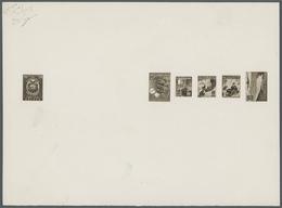 Ecuador: 1954/1955. Composite Sheet Bearing Color Proofs In BROWN For The Following Stamps: Definiti - Ecuador