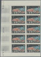 Französische Gebiete In Der Antarktis: 1963, 5fr. Crozet Islands, Imperforate Marginal Block Of Ten - Französische Süd- Und Antarktisgebiete (TAAF)