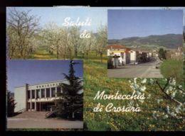 C1173 SALUTI DA MONTECCHIA DI CROSARA VG - Italy
