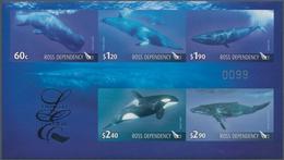 "Ross-Gebiet: 2010 'Whales': Special ""Limited Edition"" Folder (No.99 Of 2000) Containing An Imperfora - Ross-Nebengebiet (Neuseeland)"