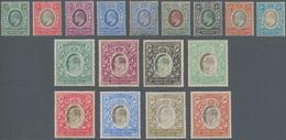Britisch-Ostafrika Und Uganda: 1904-10 KEVII. Complete Sets On Paper Watermarked Mult Crown CA, From - Kenya, Uganda & Tanganyika