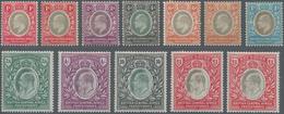 Britisch-Zentralafrika: 1903-04 KEVII. Set To £1 Plus Colour Shades Of 1d., 6d. An £1, Mint Lightly - Zonder Classificatie