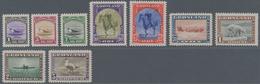 Dänemark - Grönländisches Handelskontor: 1916/45 Paketportomarken Der 2. Ausgabe Sowie Freimarkenaus - Groenland