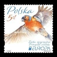 Poland 2019 Mih. 5104 Europa. National Birds. Fauna. Common Chaffinch MNH ** - Ungebraucht