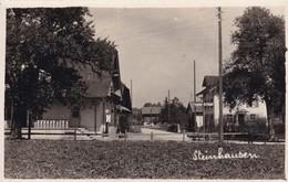 Steinhausen Mit Käserei Und Zapfsäule - ZG Zoug