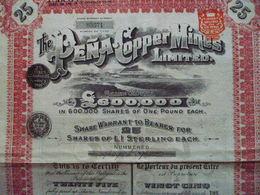 Titre De 25Actions / Shares : THE PENA COPPER MINES  1908 - Shareholdings