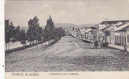 Porto Alegre  Avenida Da Varzia  - 1907     (A-76-170708/2) - Porto Alegre
