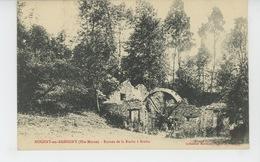 NOGENT EN BASSIGNY - Ruines De La Roche à Brebis - Nogent-en-Bassigny