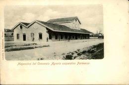 ITALIE - Carte Postale - Parma - Coopérative Agricole - L 29799 - Parma