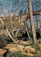 89 - Yonne - Les Ponts De Pierre Perthuis Sur La Cure - Voir Scans Recto-Verso - France
