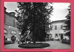 Moncrivello (VC) - Viaggiata - Italia