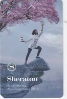 SHERATON    - HOTEL   - ROOM  KEYCARD KEY CARD - Cartas De Hotels