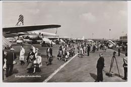 Vintage Rppc KLM K.L.M Royal Dutch Airlines Douglas Dc-7 & Dc-8 @ Schiphol Amsterdam Airport - 1919-1938: Between Wars