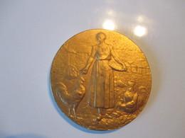 Médaille  Offerte Par La  Section S.F.I.O  SFIO Pecquencourt 3,5 Cm De Diamètre - Organizations